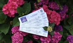 Tickets für Riesenbeck. (Foto RI)