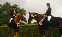 Westfalen-Champions der fünfjährigen Dressurpferde (Bildnachweis: Westfälisches Pferdestammbuch)