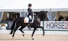 Die Britin Charlotte Fry präsentierte in Verden den niederländischen Hengst Kjento von Negro und gewann die WM-Qualifikation der sechs Jahre jungen Dressurpferde. (Foto: J.Fellner)