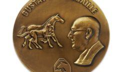 Gustav-Rau-Medaille Bronze