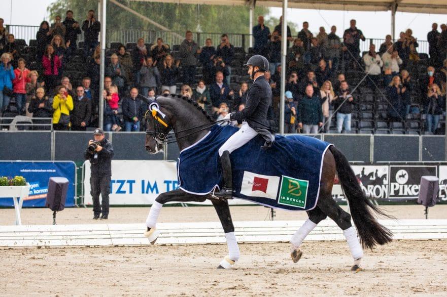 Jovian und Andreas Helgstrand aus Dänemark holten WM-Gold bei den 7 Jahre alten Dressurpferden. (Foto: J. Fellner)